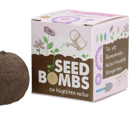 Seedbombs Wildblumen