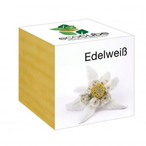 Ecocube Edelweiss