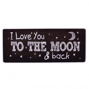 Email Schild I love you the the moon em5685